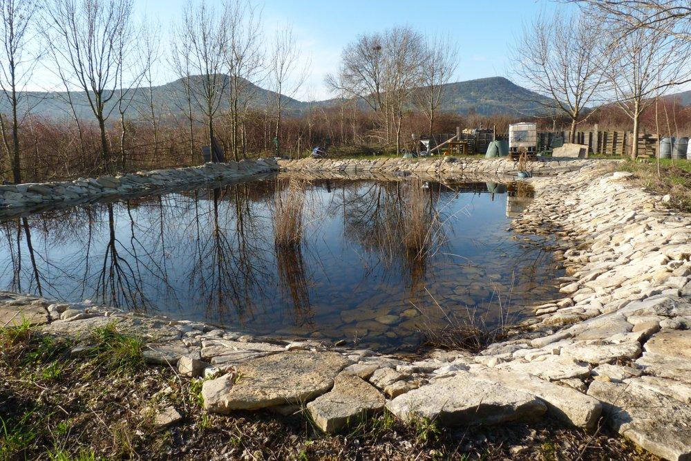 baignade-ecologique-pompignan