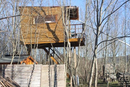 Une cabane arboricole que nous avons construite à Pompignan (Gard)