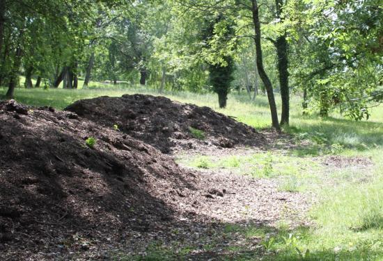 Compost de feuilles et d'herbes